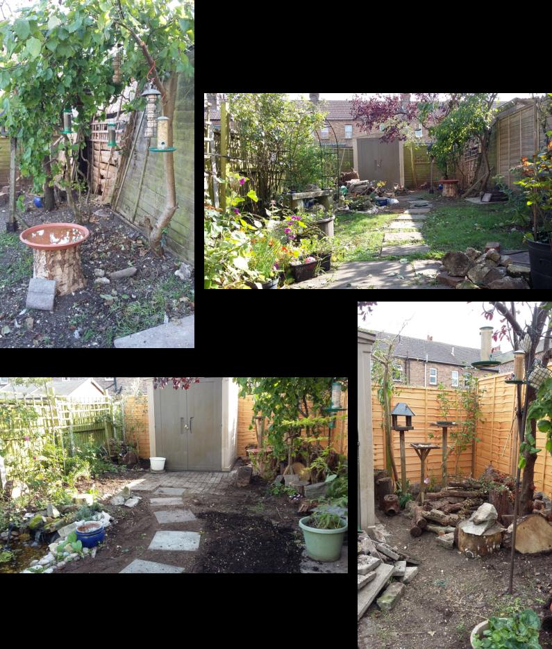 Garden Reset|!